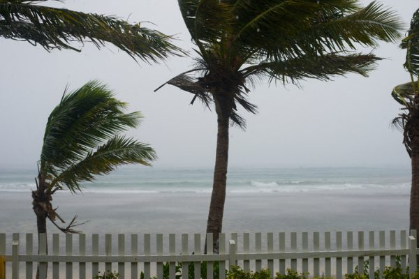 Sandy victims